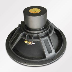 Supravox Speaker